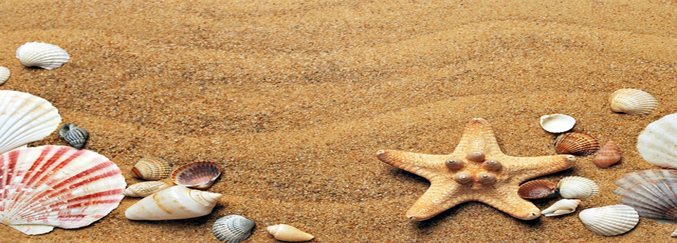 Sonne, Strand und Meer...